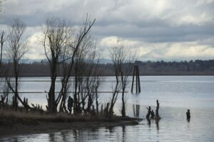 Columbian: Group reflects on Vancouver Lake