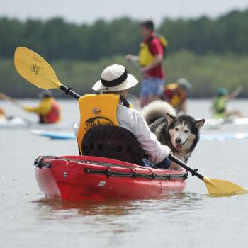 Kayaking Vancouver Lake