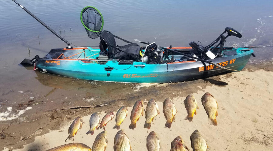 Get Your Fishing Rods Out, It's Carp Season!